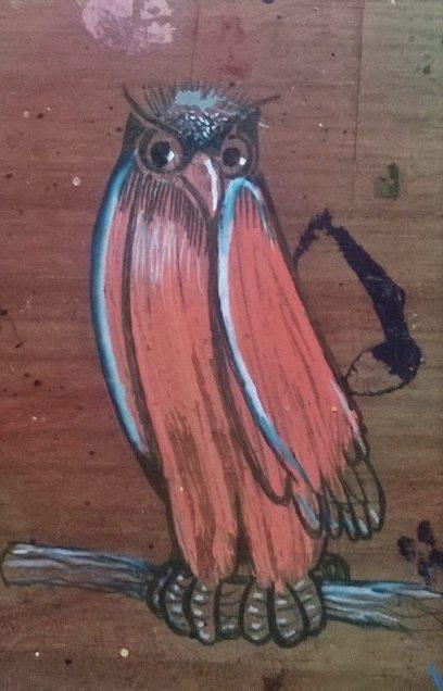 coruja-de-crista-azul