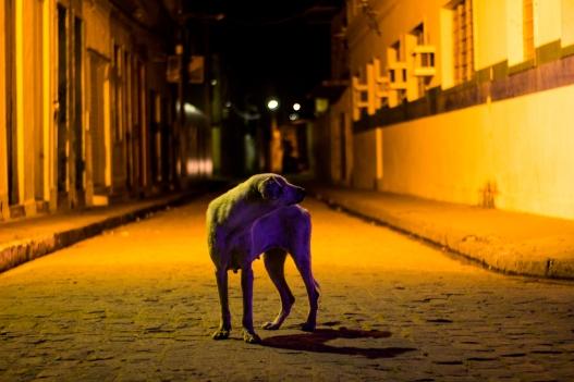 Aqui Acolá - Dossie Fotografia Alagoana - Cláudia Leite. (8)