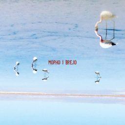 Mopho - Brejo