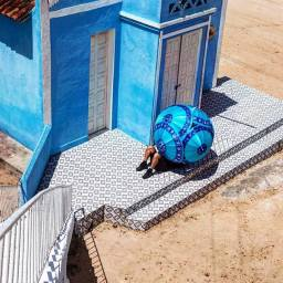 Projeto Bicho da Seda - Delson Uchôa