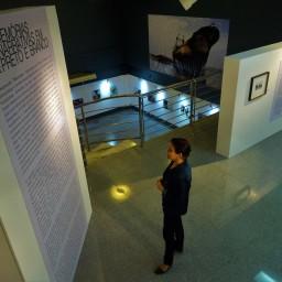 Exposição Individual MEMÓRIAS-Narrativas em P&B (2017) - Siloé Amorim | DITEAL | CURADORIA-MONTAGEM | Foto: Robertson Dorta