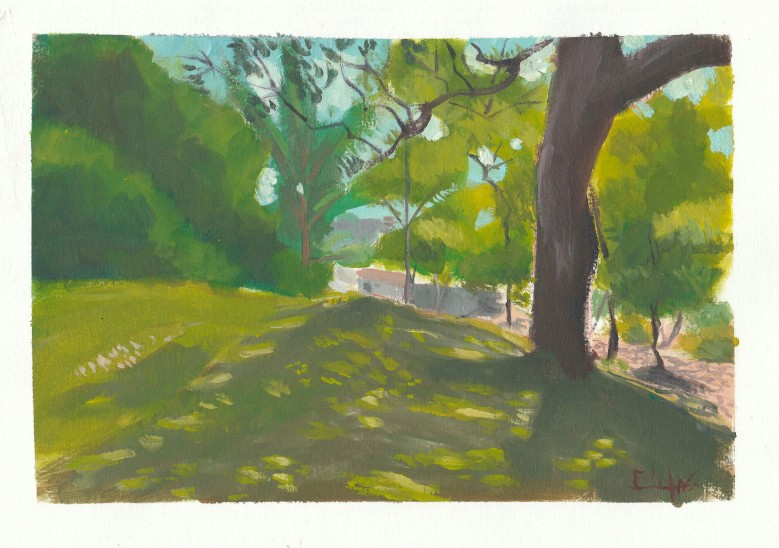 Árvores de Juvenopolis 01 Nícolas Elifas - blog AQUI ACOLÁ - PROJETO PERCURSOS (4)