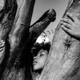 Série Angelus Foto: Gabi Coêlho