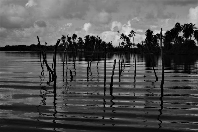 BLOG AQUI ACOLÁ - MÁRCIO VALENÇA. STITULO1. série Lagoa Mundau (17)