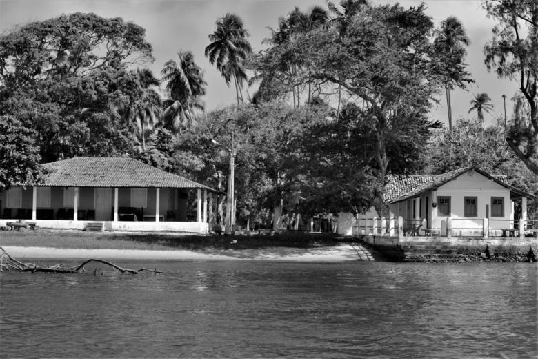 BLOG AQUI ACOLÁ - MÁRCIO VALENÇA. STITULO1. série Lagoa Mundau (18)