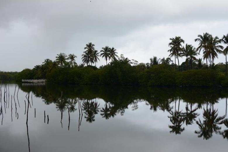 BLOG AQUI ACOLÁ - MÁRCIO VALENÇA. STITULO1. série Lagoa Mundau (6)