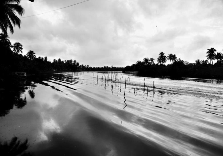 BLOG AQUI ACOLÁ - MÁRCIO VALENÇA. STITULO1. série Lagoa Mundau (7)